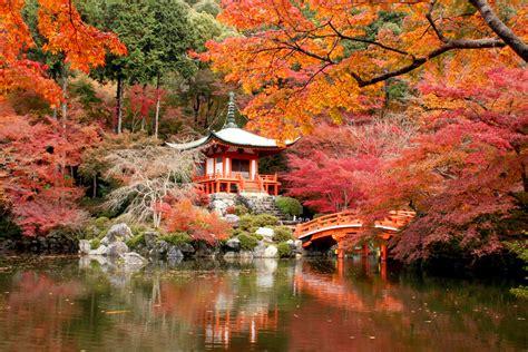 les plus belles cuisines du monde daigo ji temple kyoto travel guide