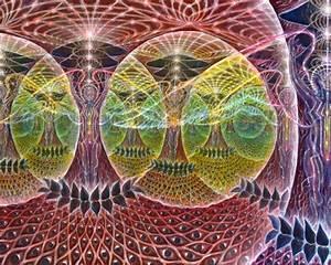 Magic Mushrooms Spores Usa