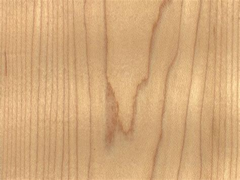 best wood for kitchen cabinets 2015 best types of wood for furniture and modern interior design