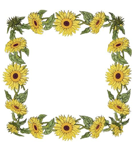 sunflower frame illustration  stock photo public