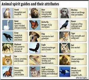 Spirit Animal meanings. Although I believe there's a LOT ...