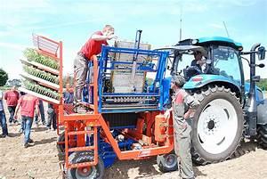 Planter Des Choux Fleurs : la plantation des choux s 39 automatise journal paysan breton ~ Melissatoandfro.com Idées de Décoration