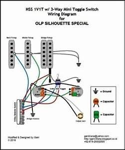 Ganitrisna U0026 39 S Blogsite  Hss 1v1t Olp Silhouette Special Wiring Diagram