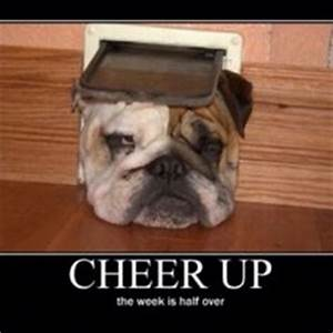 1000+ images about Cheer Up :) on Pinterest | Cheer up ...