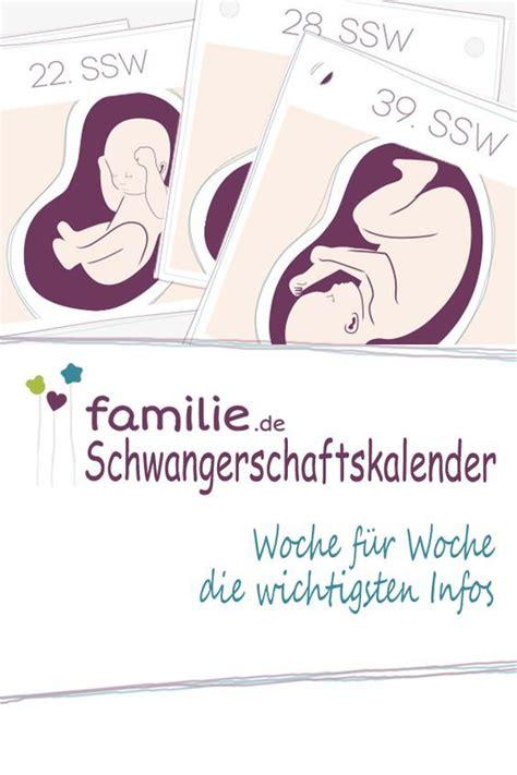 schwanger werden in der schwangerschaft schwangerschaftskalender woche f 252 r woche alle infos baby schwangerschaft