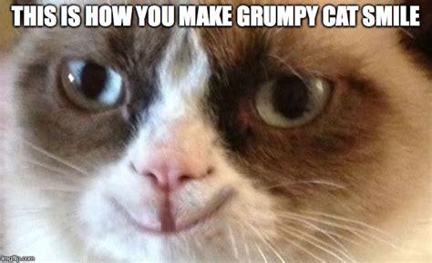 How To Make A Grumpy Cat Meme - grumpy cat happy imgflip