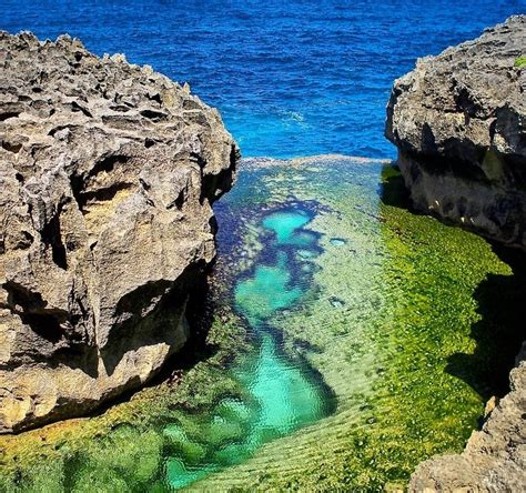 Scoot Boat To Nusa Penida by Nusa Penida Day Trips By Coral Shop The Lembongan Traveller