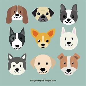 Dogs Vectors, Photos and PSD files   Free Download
