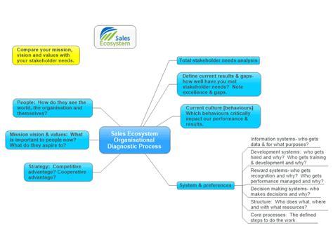 sales ecosystem organisational diagnostic process