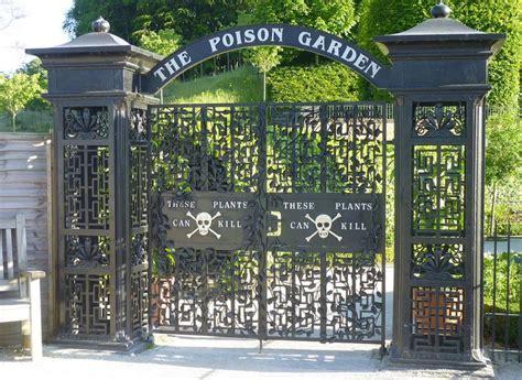 poison gardens a lovely english garden full of deadly poisonous plants nicola ginzler