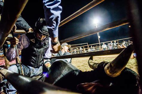 BULL RIDING bullrider cowboy western cow extreme bull ...