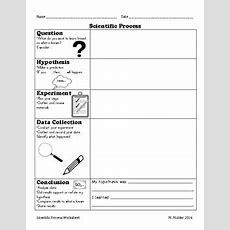Scientific Process  Scientific Method General Worksheet By Melissa Mulder