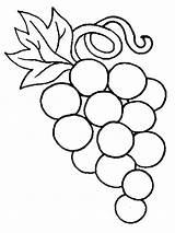 Coloring Pages Grapes Grape Fruits Printable sketch template