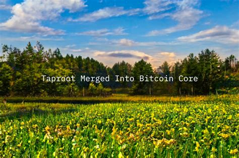 The general perception of bitcoin's privacy has transitioned towards more emphasis on improving it as the in particular, one significant privacy boon for the legacy cryptocurrency, known as taproot, is. Taproot Merged Into Bitcoin Core - Bitcoin Magazine: Bitcoin News, Articles, Charts, and Guides