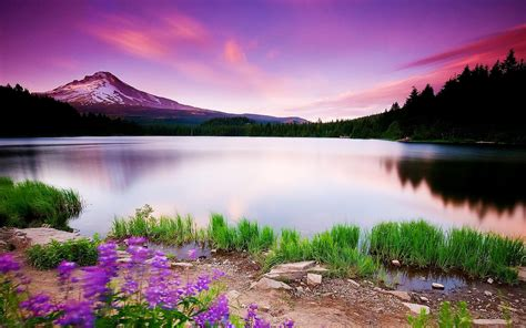 Beautiful Nature Background by Scenery Of Nature Scenery In 2019 Scenery Wallpaper