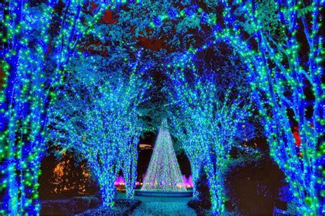 botanical gardens cristmas lights tour atlanta botanical gardens lights hgtv