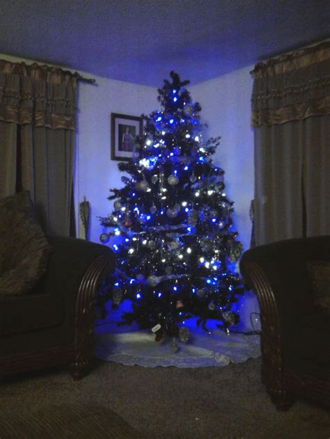 our black christmas tree with blue white lights holidays