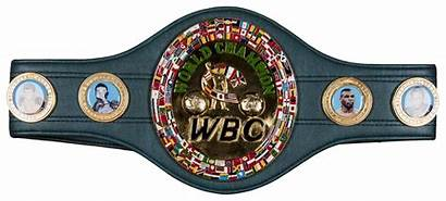 Wbc Mayweather Floyd Belt Championship Autographed Beckett