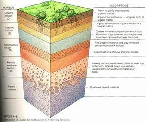 Soil Profile Diagram For School Soil Layers Diagram