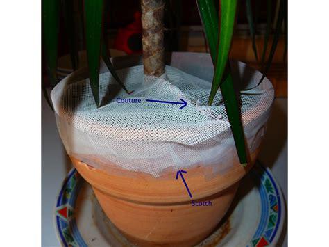 produit contre les moucherons cuisine produit anti mouche maison permax 250 combi flacon de 100