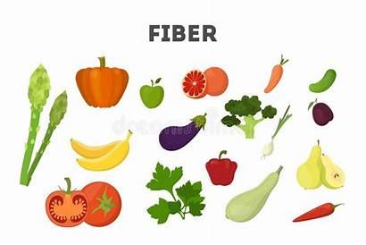 Fiber Beans Rice Broccoli Cartoon Fruit Isolated