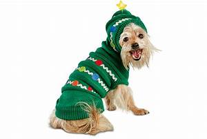 Dog Sweaters for National Ugly Christmas Sweater Day ...