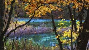 Blue, Lake, Goshikinuma, Fukushima, Japan, Autumn, Scenery