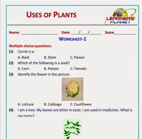 uses of plants grade evs science worksheets test papers