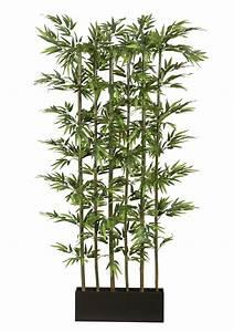 Bambus Als Zimmerpflanze : kunstplant bamboe met natuurlijke stengels koop je bij otto ~ Eleganceandgraceweddings.com Haus und Dekorationen