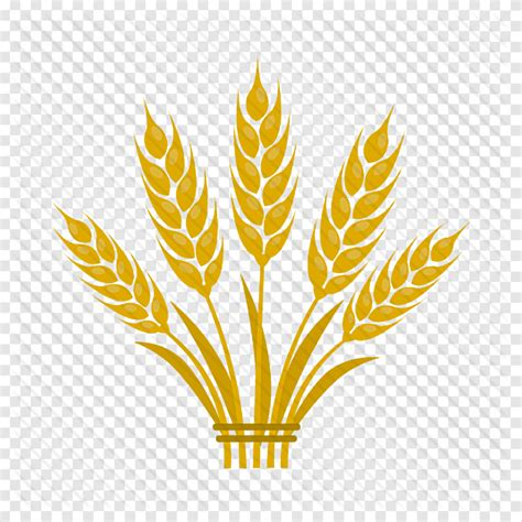 512x512 - Icon, agriculture, farming, plant, flat png ...