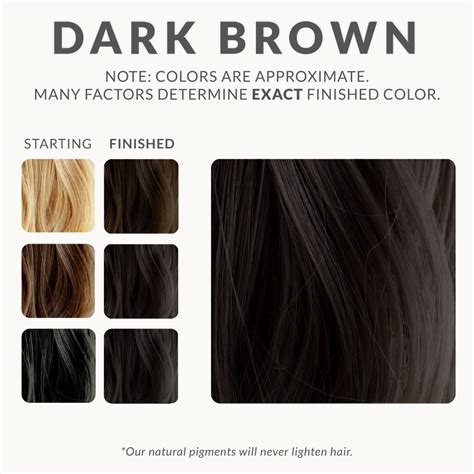Hair Dyes For Brown Hair by Brown Henna Hair Dye Henna Color Lab 174 Henna Hair Dye