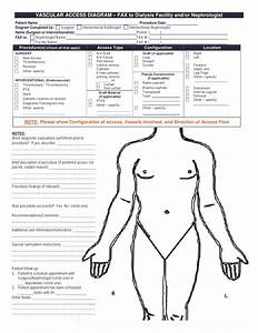 Vascular Access Diagram  U2013 Fax To Dialysis Facility And  Or