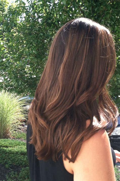 Light Brown Hair Honey Highlights Beauty Pinterest