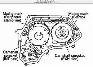 1998 Nissan Altima Timing Chain Replacement Diagram