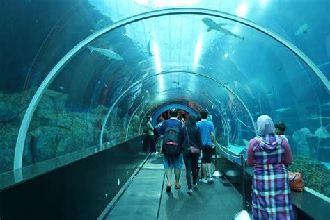 sea aquarium underwater world file shark seas s e a aquarium marine park resorts world sentosa singapore 20130105