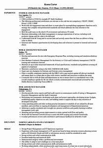 Risk Assurance Manager Resume Samples