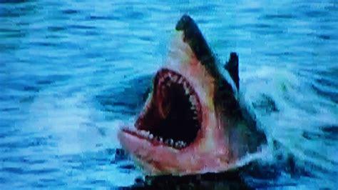 Toxic Shark Movie Review