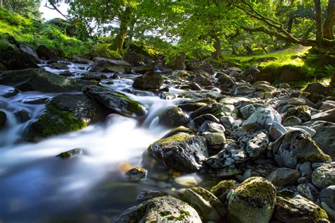 water stream landscape  stock photo public domain