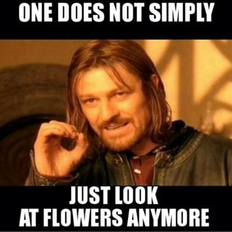 Look At The Flowers Meme - one does not simply just look at flowers anymore jpegy what the internet was meant for