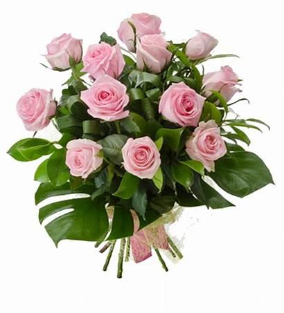 Bouquet Flowers Roses Pink Flower Transparent Rose