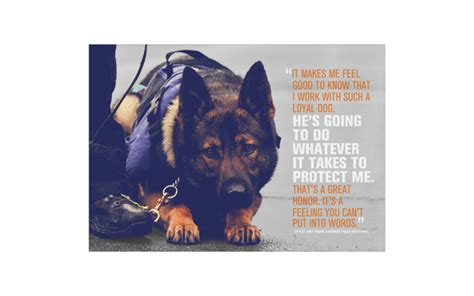 police dog funny quotes quotesgram