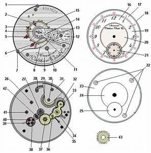 Understanding Pocket Watch Parts