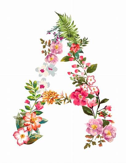 Floral Letter Letters Flower Pretty Clipart Designs