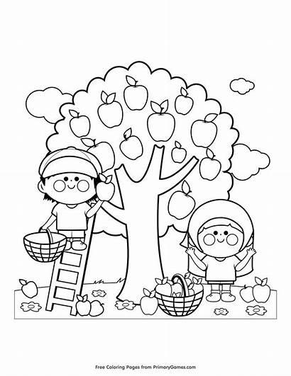 Coloring Colorare Fall Disegni Bambini Printable Autunno