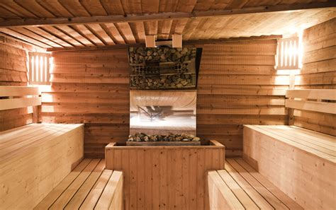 Sauna : 52 Dry Heat Home Sauna Designs (photos