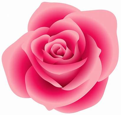 Rose Clipart Clip Pink Outline Clipartpanda Roses