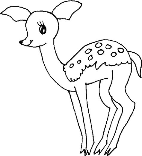Coloring Deer by Baby Deer Coloring Page Coloring Home