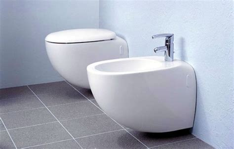 An Idiot's Incomplete Guide To The Bidet Vagabondish