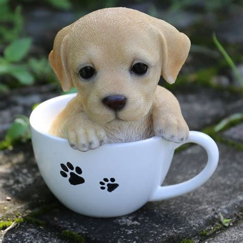 hi line gift ltd teacup labrador puppy statue reviews wayfair