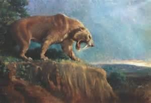 Smilodon Sabertooth Cat
